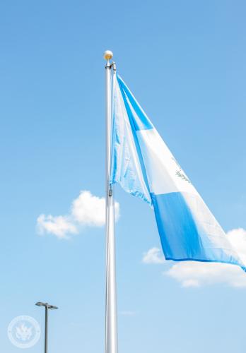 Dia Banderas-19